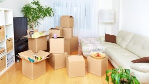Organize Packers and Movers Delhi